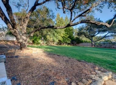 Backyard2-oak-1024x682