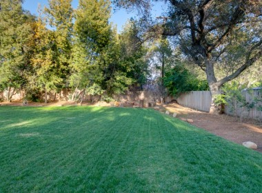 Backyard6-1024x682
