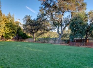 Backyard7-1024x682